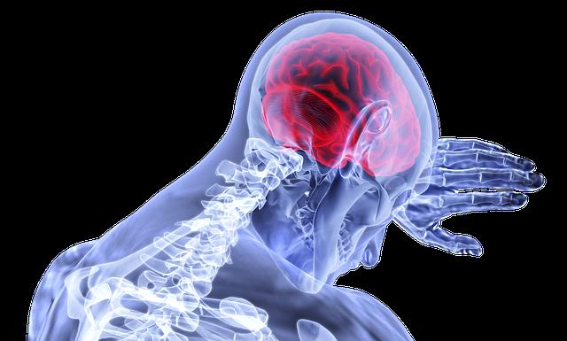 Nuestro cerebro también necesita sufrir 3