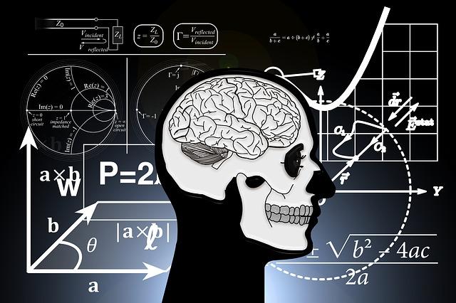 ¿Existe un cerebro matemático? 3