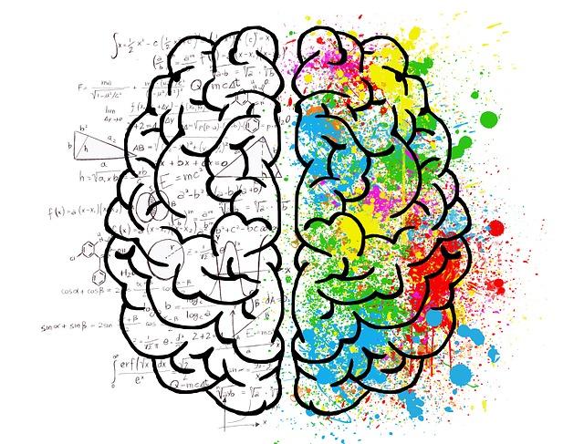 Sexo, droga y Rock And Roll en el cerebro 3